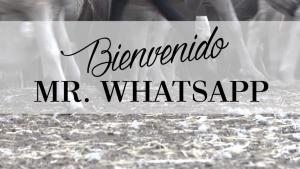 "CORTOMETRAJE ""BIENVENIDO MR. WHATSAPP"""